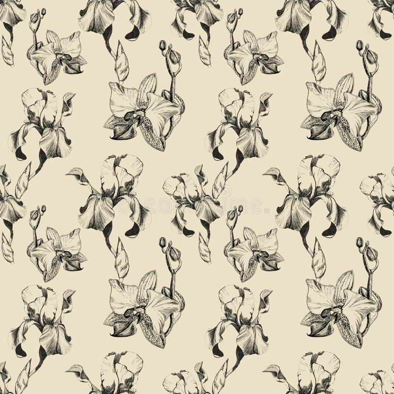 Floral seamless pattern with hand drawn ink iris and orchid flowers on beige background. Flowers lined up in harmonious. Uninhibited sequence royalty free stock photography