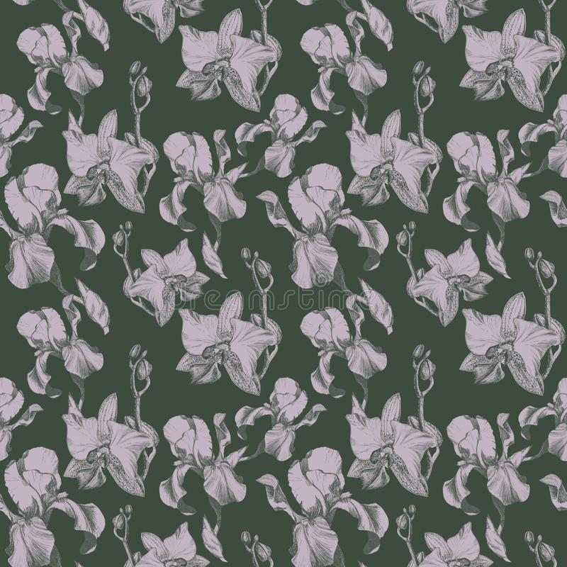Floral seamless pattern with hand drawn ink iris and orchid flowers on dust green background. Flowers lined up in. Floral seamless pattern with hand drawn ink royalty free illustration