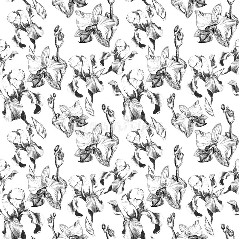 Floral seamless pattern with hand drawn ink iris and orchid flowers on white background. Flowers lined up in harmonious vector illustration