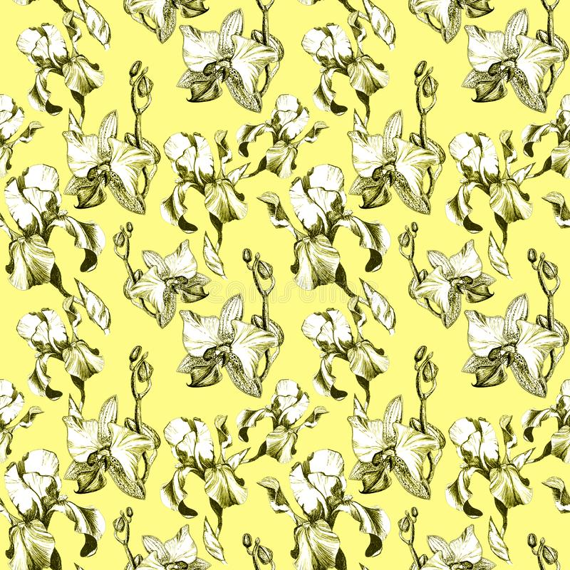 Floral seamless pattern with hand drawn ink iris and orchid flowers on yellow background. Flowers lined up in harmonious. Uninhibited sequence vector illustration