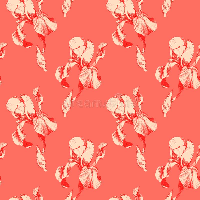 Floral seamless pattern with hand drawn red ink iris flowers on coral living background. Flowers lined up in harmonious. Geometric sequence royalty free illustration
