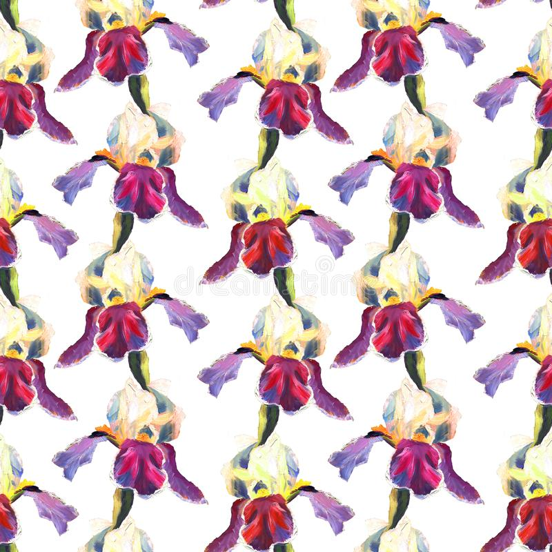 Floral seamless pattern with oil painted irises on white background stock illustration