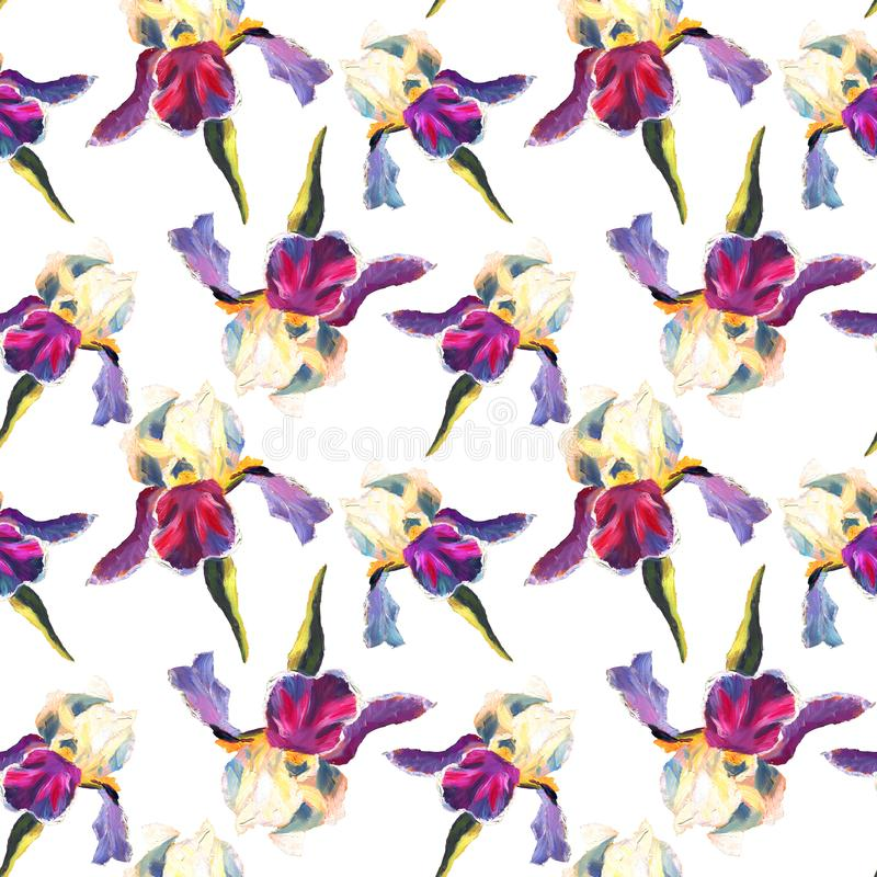 Floral seamless pattern with oil painted irises on white background.  stock illustration
