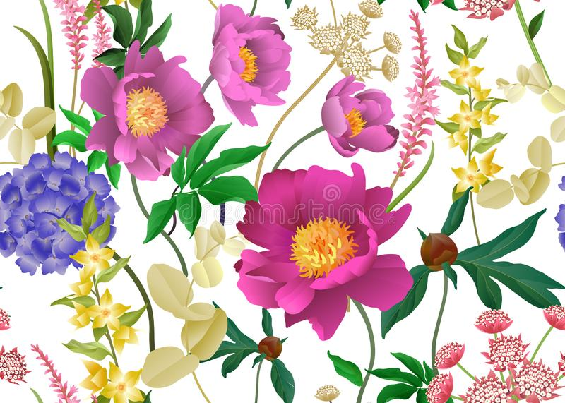 Floral seamless pattern. Peonies, hydrangeas, eucalyptus branches, foliage and herbs on white background. Garden flowers. Floral seamless pattern. Peonies stock illustration