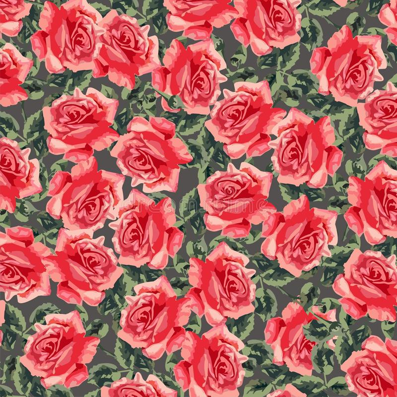 Floral Seamless Pattern (roses) Royalty Free Stock Images