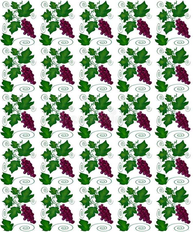 Floral seamless pattern. With swirl, leaf and vine grape royalty free illustration