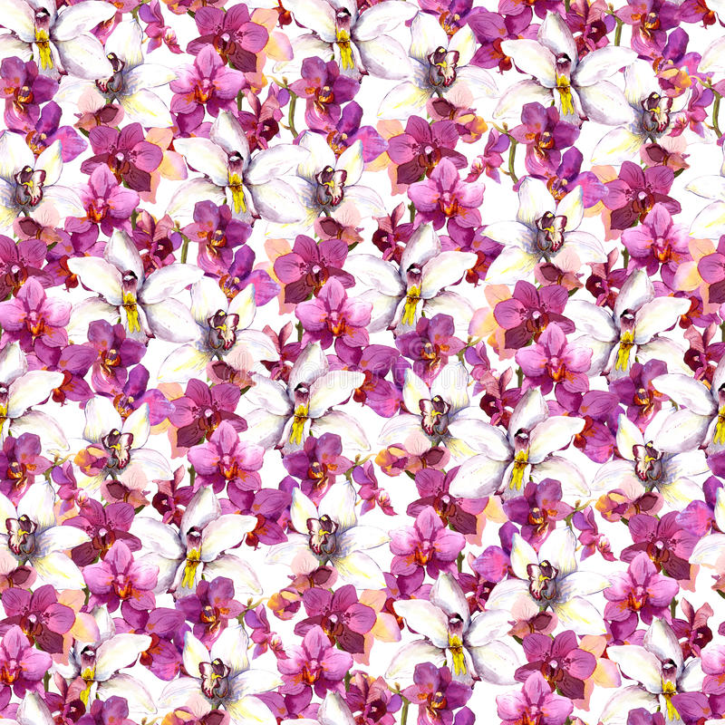Floral seamless pattern with watercolor orchid flowers on white background vector illustration
