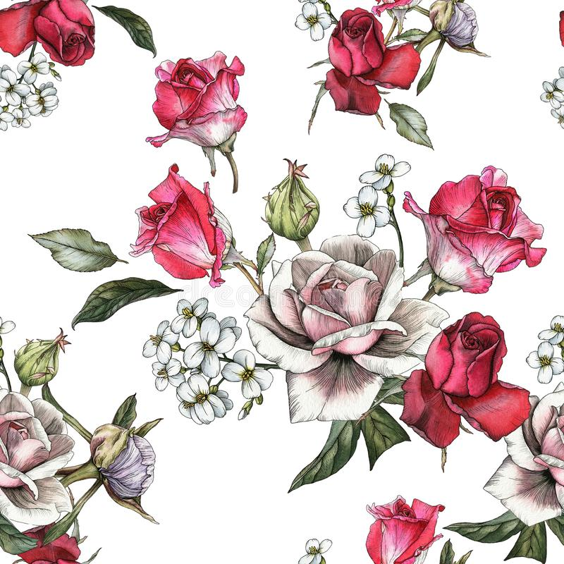 Floral seamless pattern with watercolor pink and red roses and jasmine. On the white background royalty free illustration