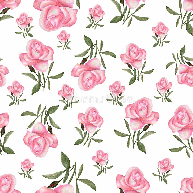 Floral seamless pattern with watercolor roses in pink rose color and green leaves. cute flowers seamless pattern.Hand drawn stock illustration