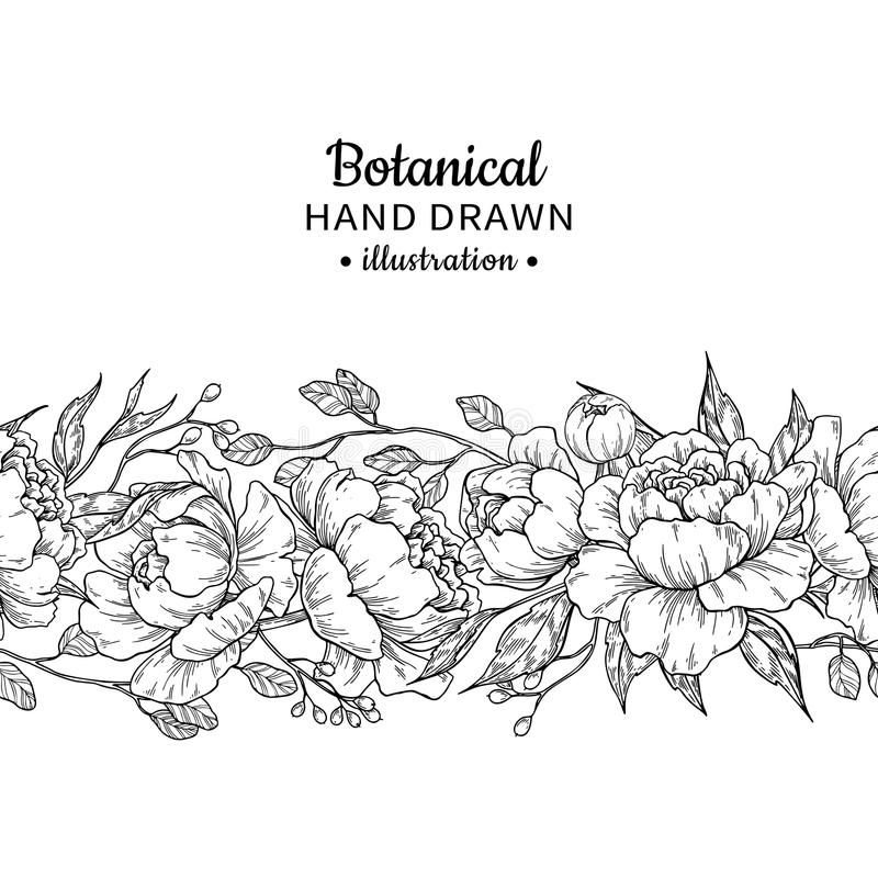 Floral seamless vintage border. Vector peony and roses botanical. Drawing. Isolated flower sketch. Engraved bouquet with leaves and berries. Summer greeting stock illustration