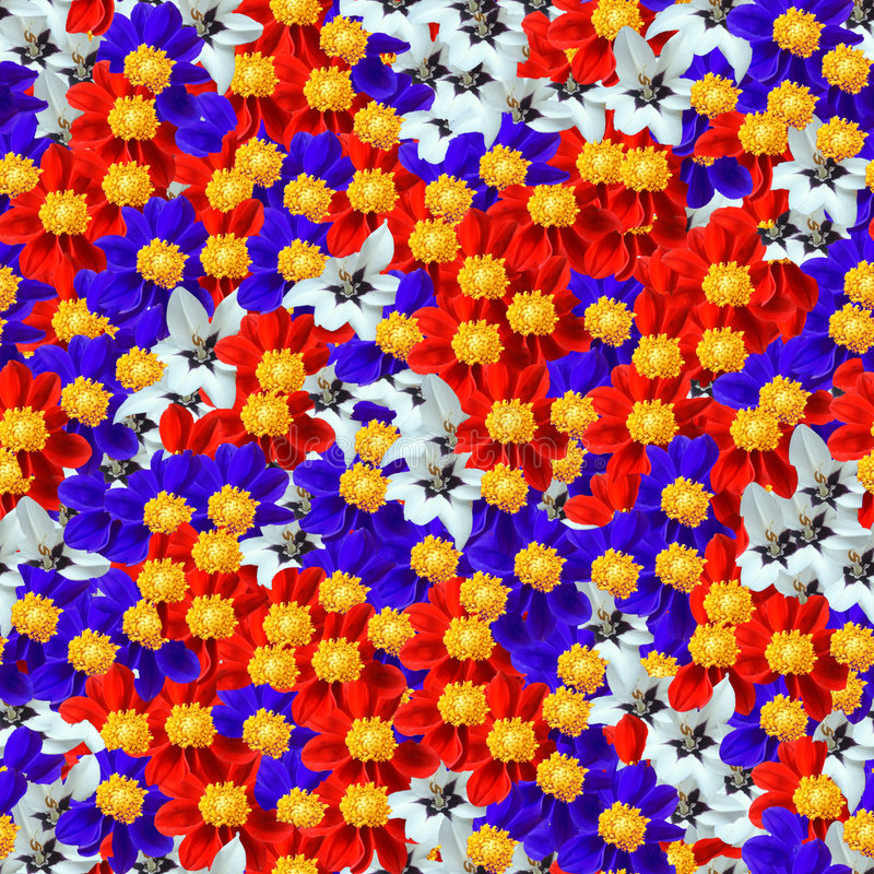 Download Floral Seamlessly Composable Pattern Stock Image - Image: 7744313