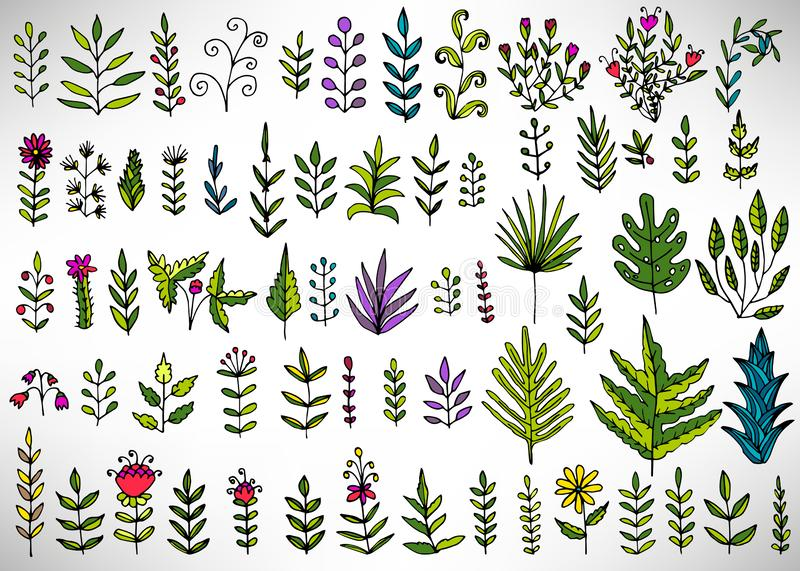 Floral set of colorful hand drawn elements, tree branch, bush, plant, tropical leaves, flowers, branches, petals vector illustration