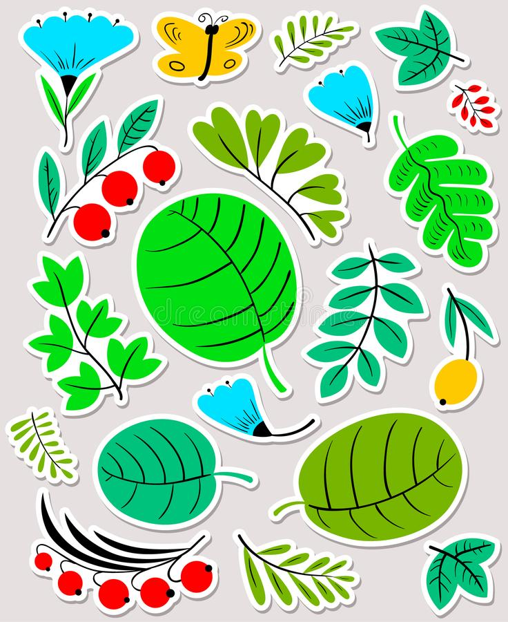 Download Floral Set. Flowers And Leaves Collection. Vector Illustration W Stock Photo - Image of berry, blossom: 116736000