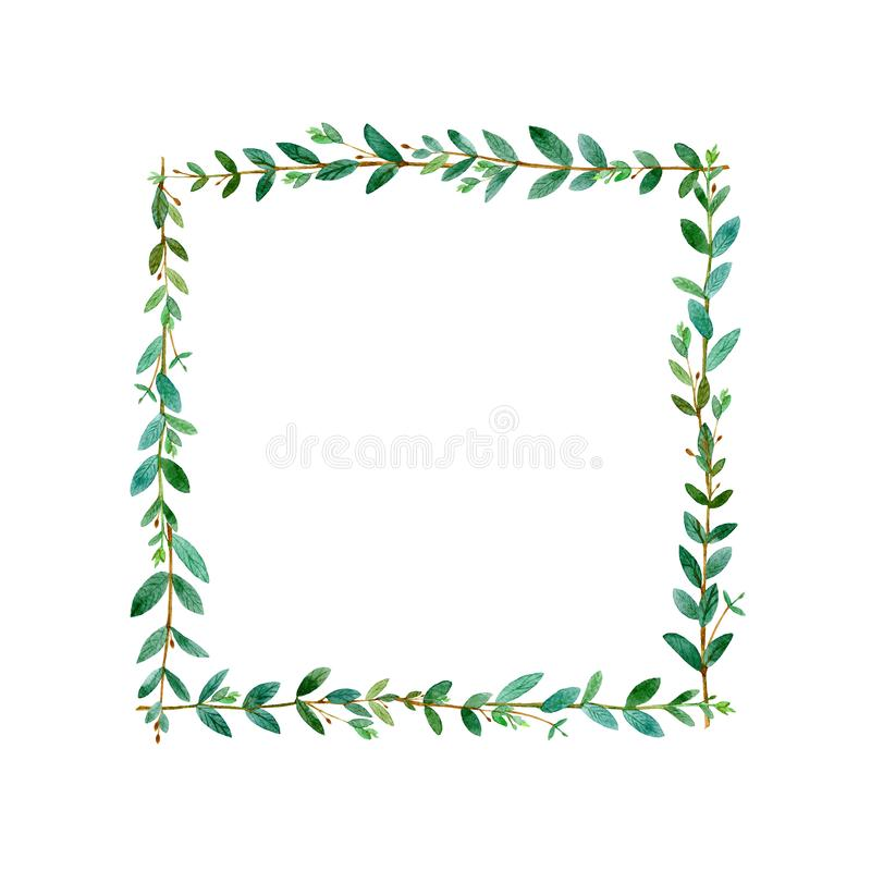 Floral square wreath.Garland with eucalyptus branches.Watercolor royalty free stock image