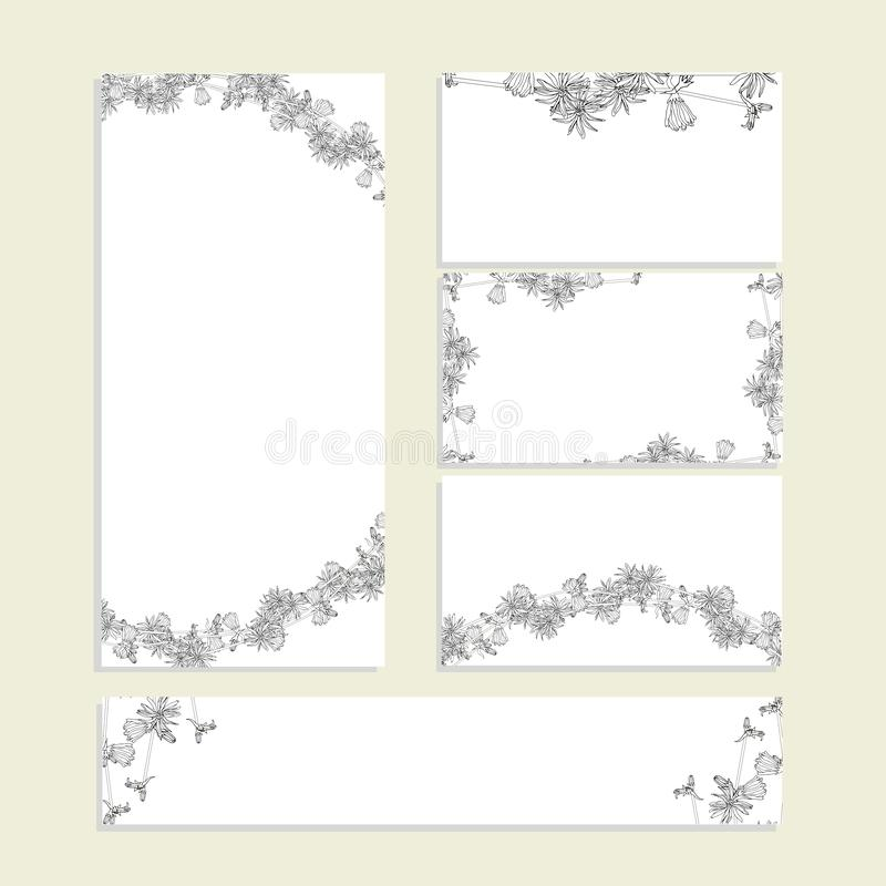 Floral summer templates with cute bunches of monochrome cichorium. For romantic design, announcements. Greeting cards, posters, advertisement stock vector vector illustration