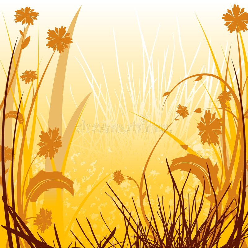 Free Floral Sunlit Countryside Stock Photography - 4988662
