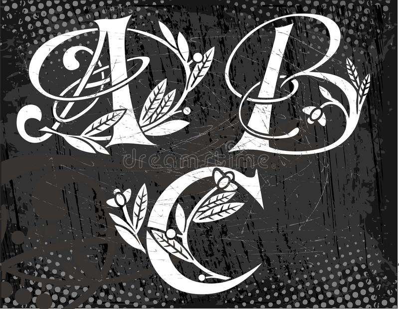 Floral Text Abc In The  Image Stock Photo