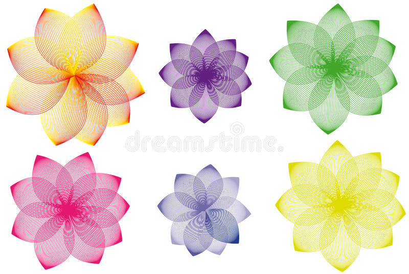 Download Floral Variations Stock Photos - Image: 13558383