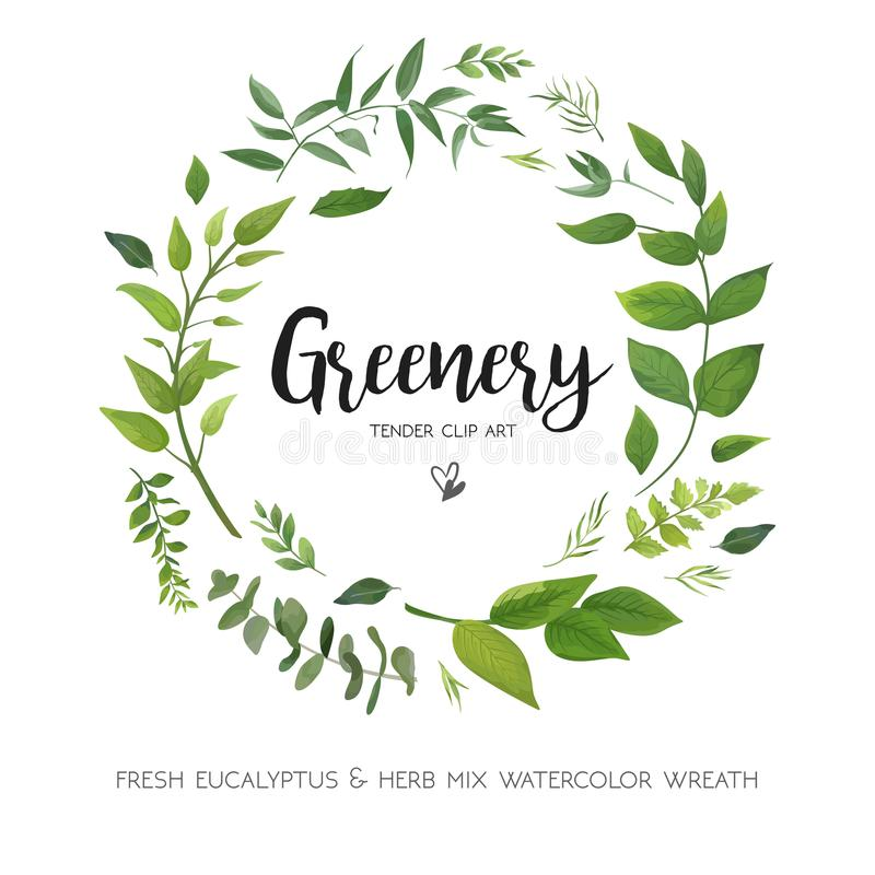 Floral vector card Design with green Eucalyptus fern leaves elegant greenery, herbs forest round, circle wreath beautiful cute ru. Stic frame border print vector illustration