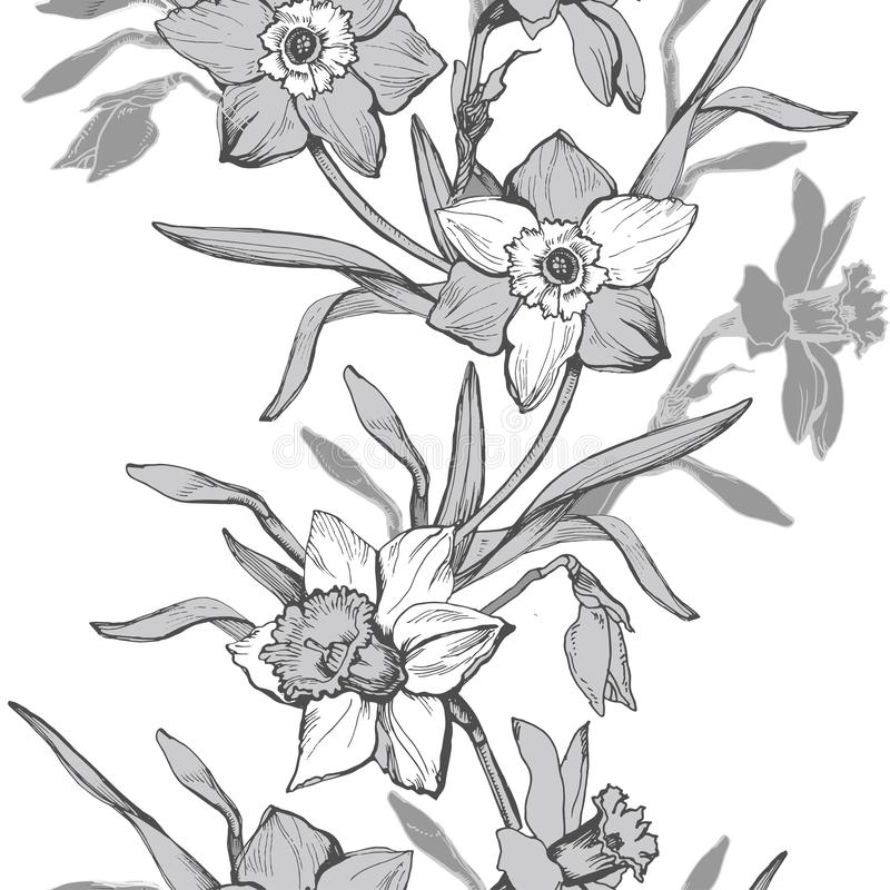 Floral vertical seamless pattern with hand drawn flowers daffodils, vector illustration