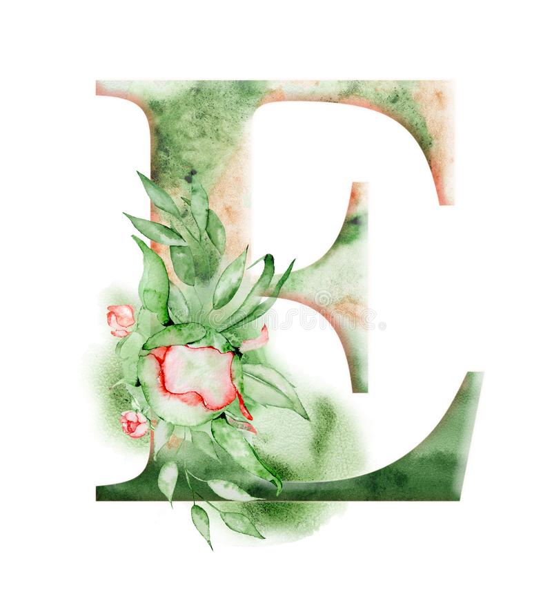Floral Watercolor Alphabet  Monogram Initial Letter E