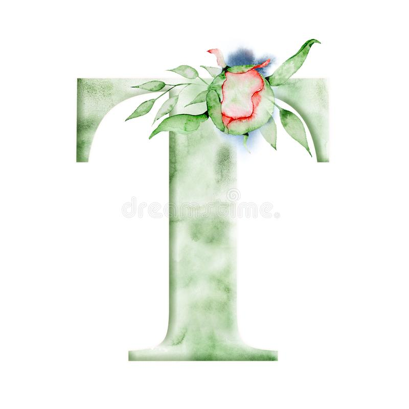 Download Floral Watercolor Alphabet Monogram Initial Letter T Design With Hand Drawn Peony Flower Stock