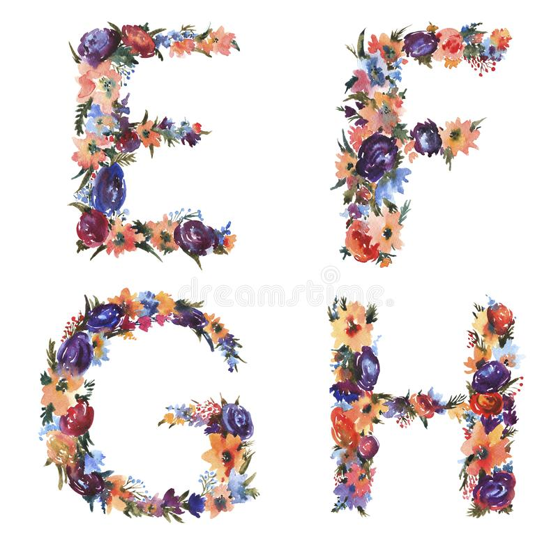 Floral Watercolor Alphabet Set, Letters E F G H Made of Flowers royalty free illustration