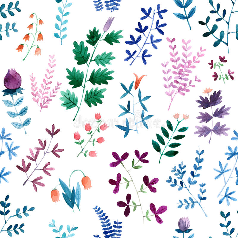 Floral watercolor seamless pattern. Beautiful vector hand drawn texture. stock image