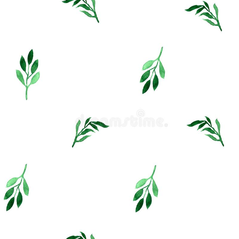 Floral watercolor seamless pattern. Decorative background. Floral watercolor seamless pattern of hand painted green leaves. Colorful decorative background vector illustration