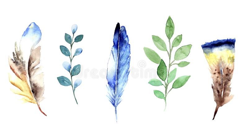 Floral watercolor set with blue and green feathers and green twigs. Watercolor hand painted illustration, floral elements feathers and twigs, isolated elements vector illustration