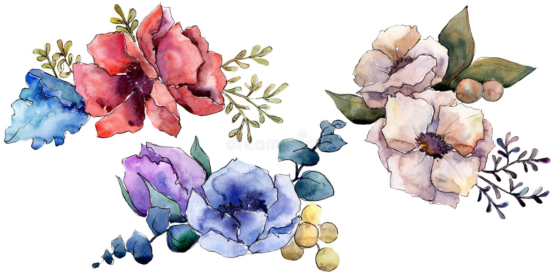 Floral βοτανικά λουλούδια ανθοδεσμών Σύνολο απεικόνισης υποβάθρου Watercolor Απομονωμένο στοιχείο απεικόνισης ανθοδεσμών ελεύθερη απεικόνιση δικαιώματος