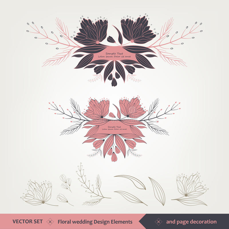 Floral wedding Design and elements stock image