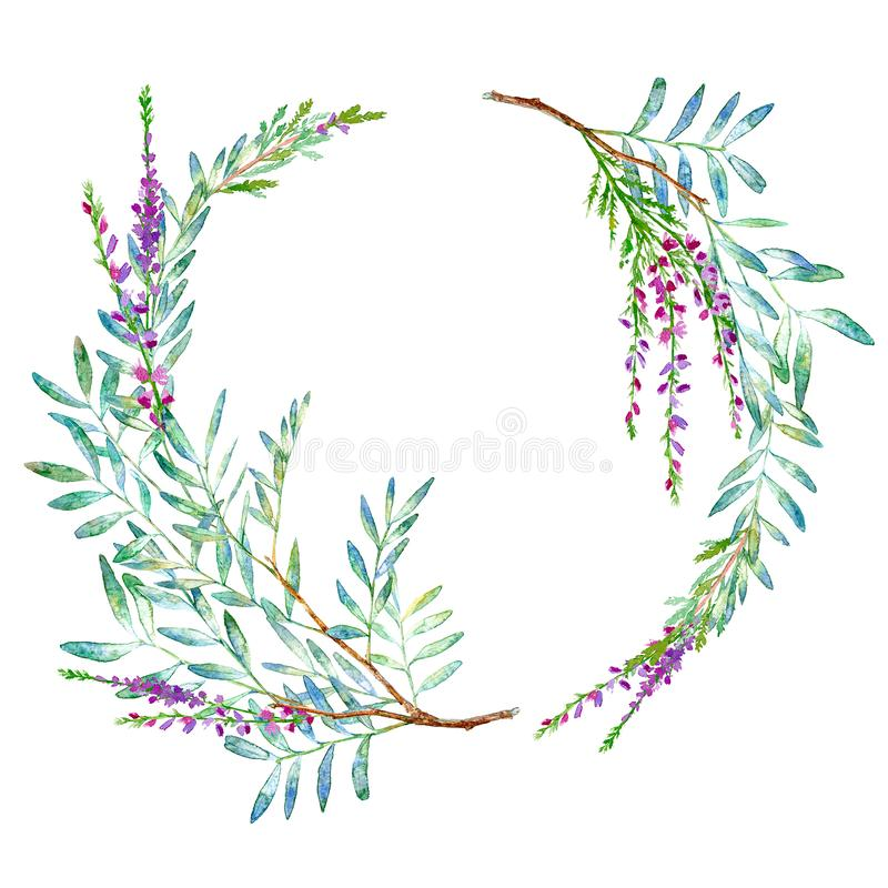 Floral wreath.Garland with pistachio branches and lavender flowers. Watercolor hand drawn illustration.It can be used for greeting cards, posters, wedding cards vector illustration