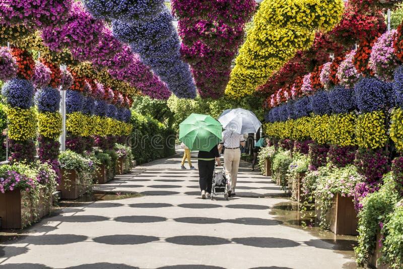 Floralies photos stock