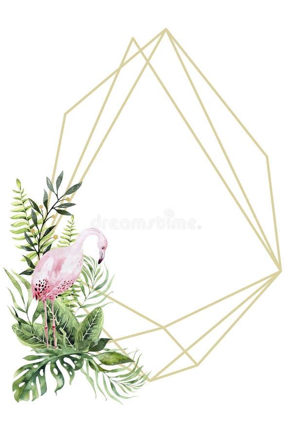Florariums tropicales del oro de la acuarela exhausta de la mano con el flamenco Ejemplos ex?ticos del marco del florarium para e ilustración del vector