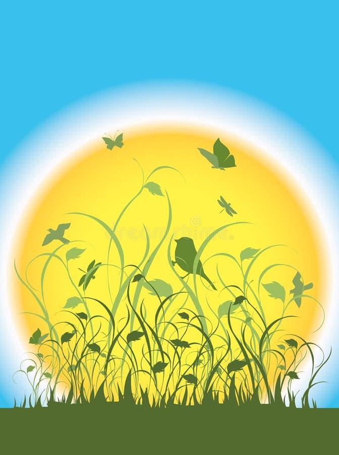 Flore, faune et un grand soleil