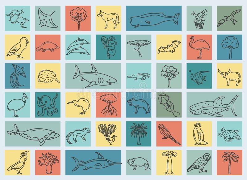 Flore plate d'Australie et d'Océanie et éléments de faune Animaux, b illustration de vecteur