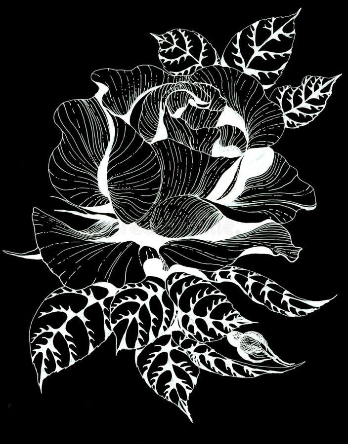 Florece la rama de A de rosas con las hojas, las flores y los brotes watercolor Collage de flores y de hojas en fondo negro libre illustration