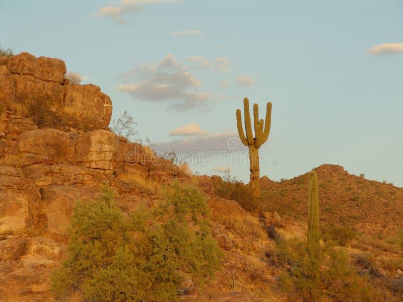 Florence, Arizona stock images
