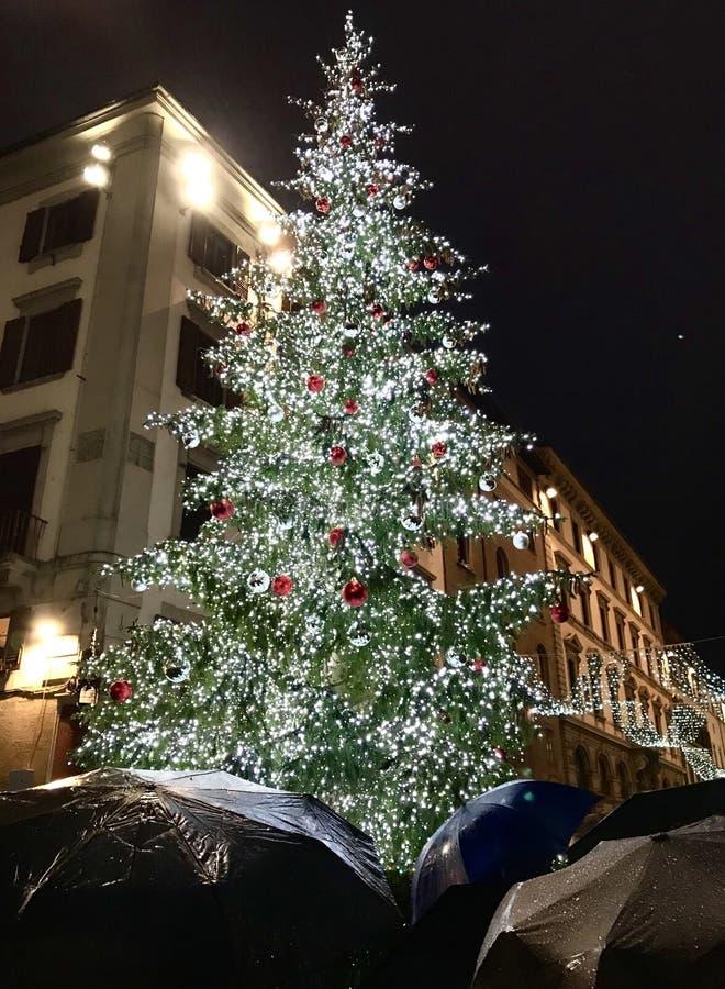 Florence Christmas Tree y paraguas imagen de archivo libre de regalías