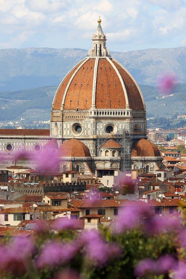 florence katedralni kwiaty obraz royalty free