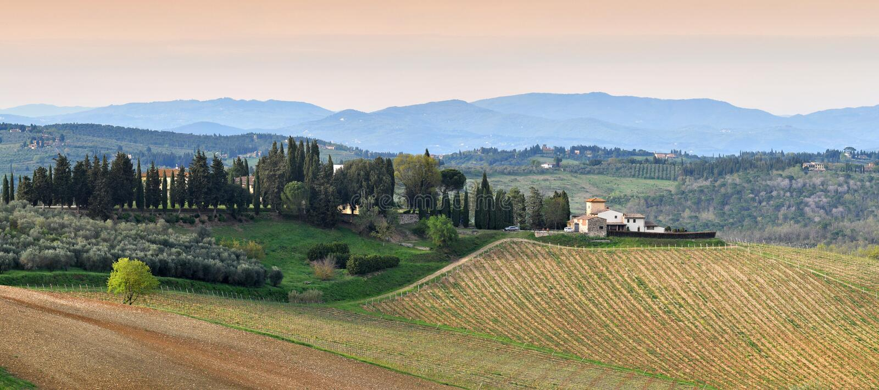 Florencia, abril de 2019: Paisaje de Toscana con las colinas y los viñedos verdes jovenes cerca de Mercatale Val di Pesa Florence imagen de archivo