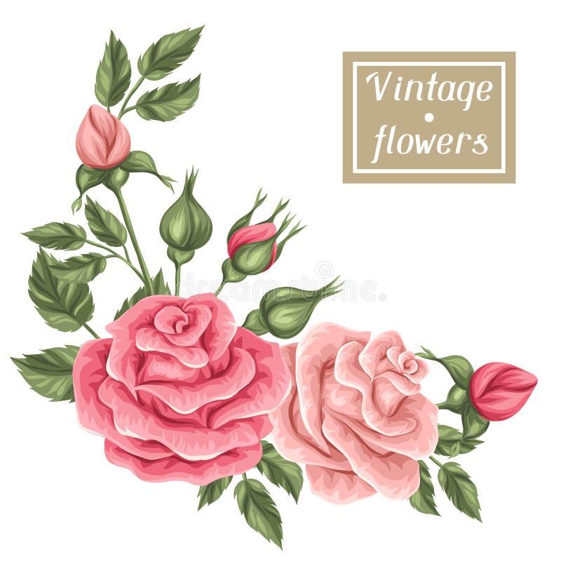 Florenelement mit Weinleserosen Dekorative Retro- Blumen stock abbildung