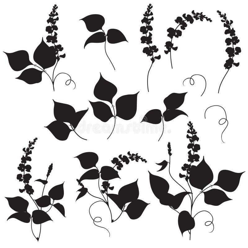 Florenelemente silhouettieren Satz lizenzfreie abbildung