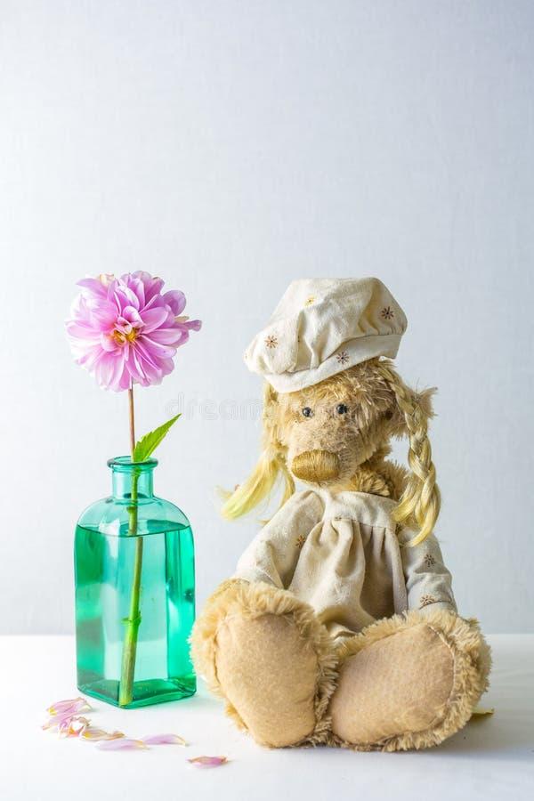 Florero con la solos flor y saasha el oso imágenes de archivo libres de regalías