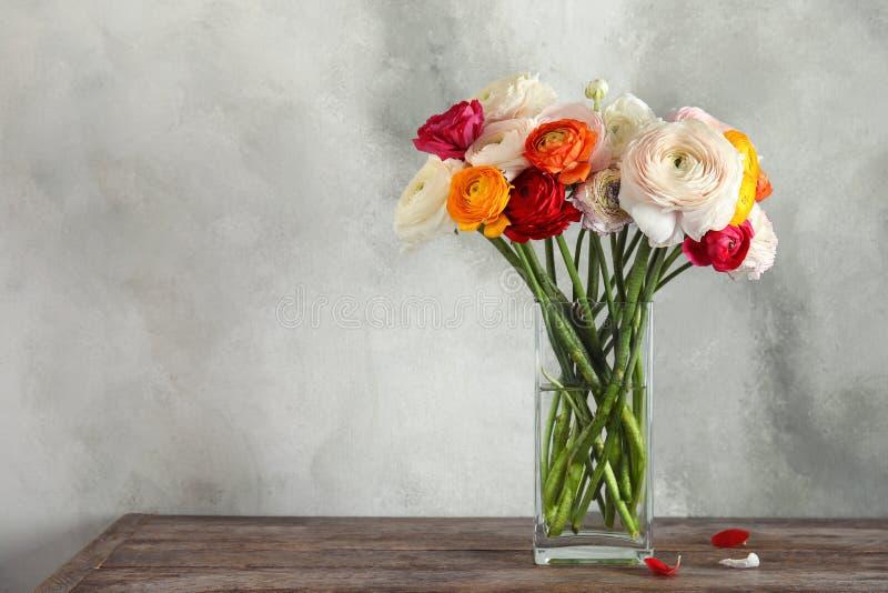 Florero con las flores hermosas del ranúnculo de la primavera en la tabla de madera foto de archivo libre de regalías