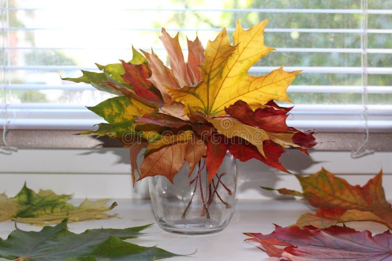 Florero con las hojas imagenes de archivo