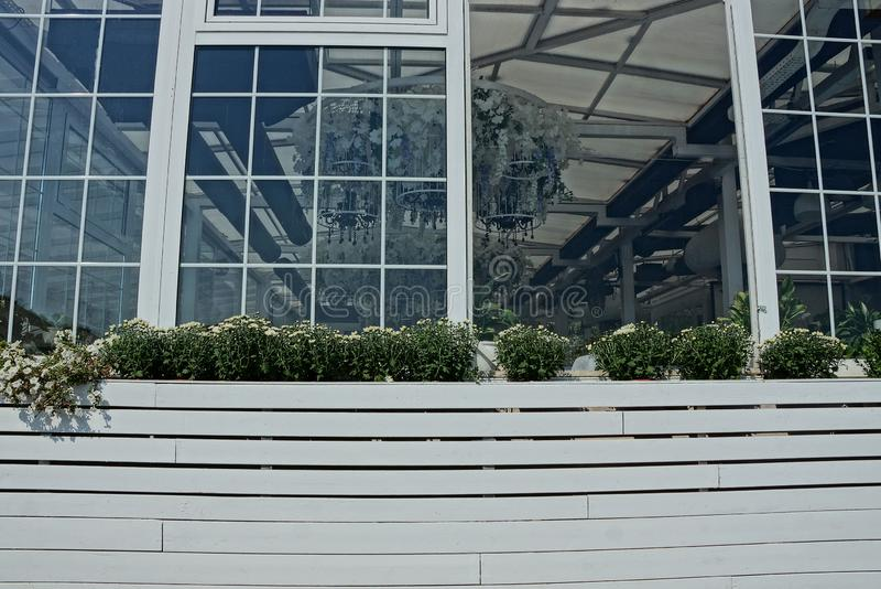 Florero de madera blanco grande con la vegetación decorativa en la ventana abierta foto de archivo