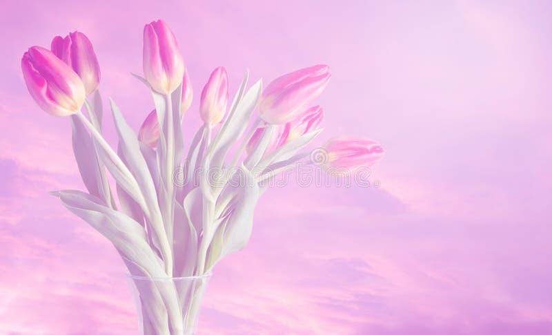 Florero de tulipanes con colores soñadores y fondo rosado suave foto de archivo