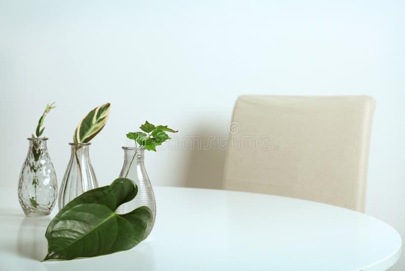 Floreros de cristal con las hojas verdes foto de archivo